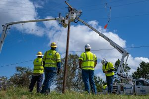 Distribution poles replaced